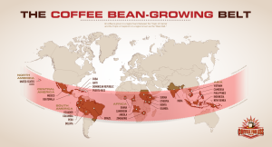 Coffee Bean-Growing Belt