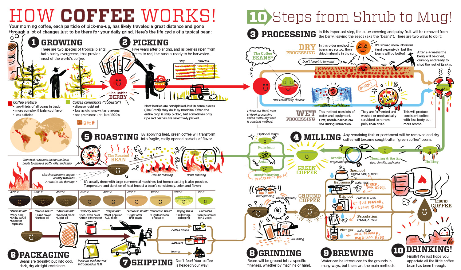 Ten steps of coffee production essay